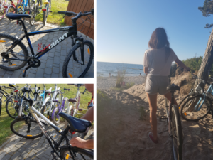 wypożyczalnia rowerów wicie